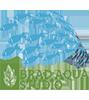 Bradaqua Studio