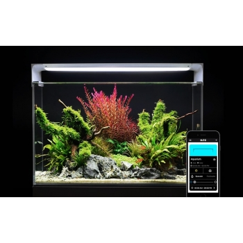 ONF Flat One + Standard - The Smart Aquarium Lighting with App Controlled, Full Spectrum